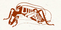 entosoc logo