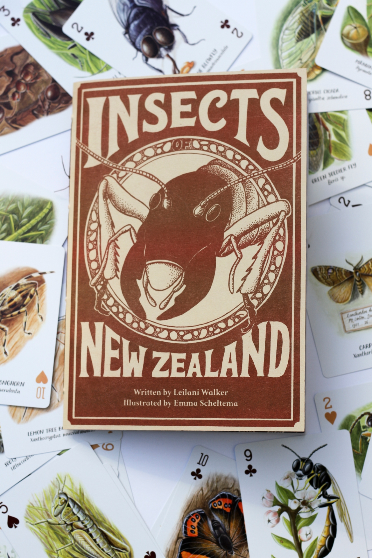 Insect-Pins-Zines_August2017 (24 of 105)